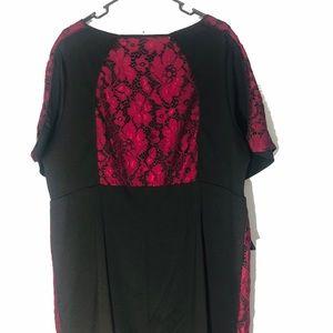 Eloquii Dresses - Eloquii Zip Front Lace Dress